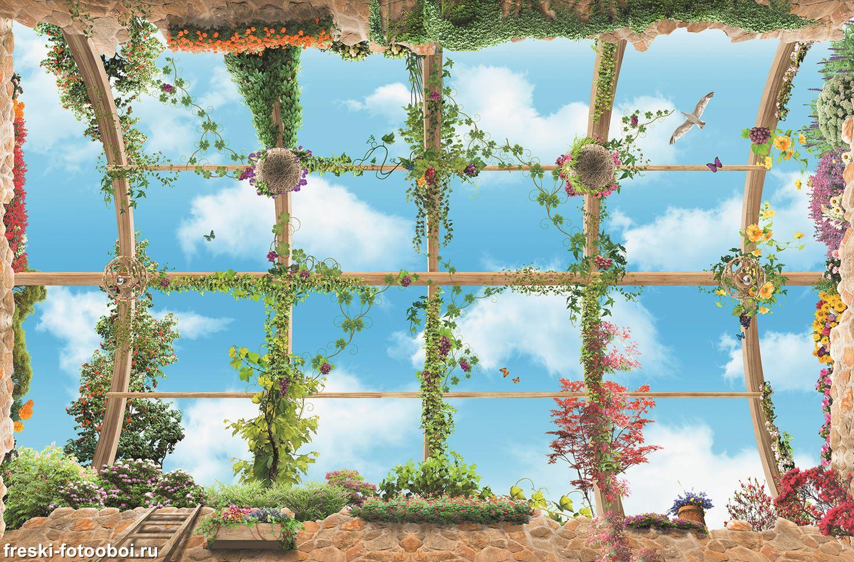 Фотообои «Виноградная лоза»