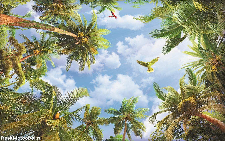 Фотообои «Попугай над пальмами»
