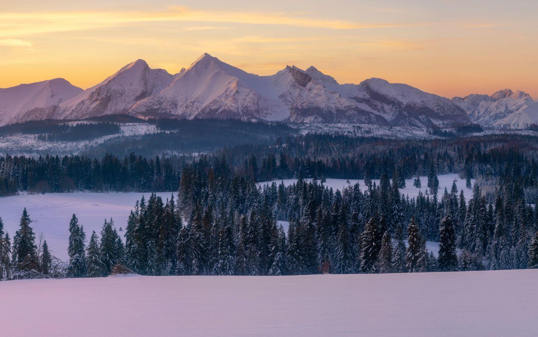 Фотообои «Зима лес горы»