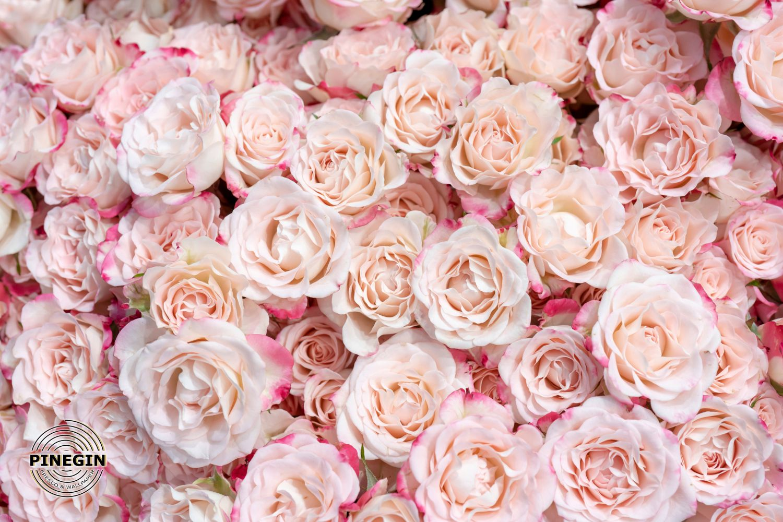 Фотообои «Облако из розовых роз»