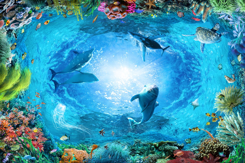 Фотообои «Морские обитатели»