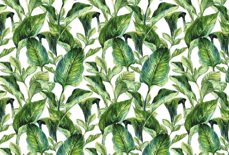 Фрески «Вечнозеленые листья»