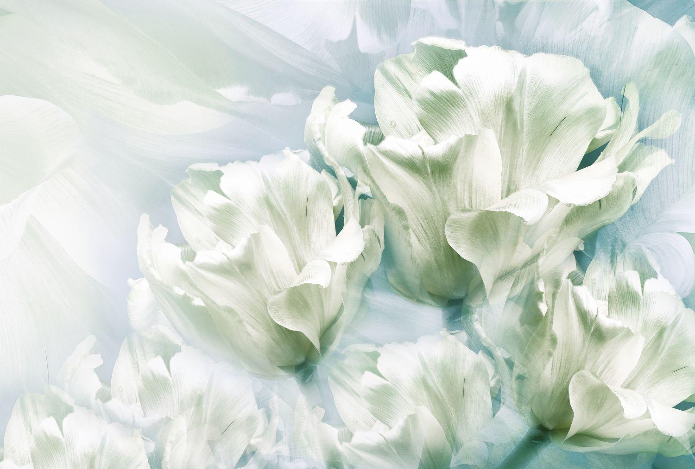 Фрески «Тюльпаны 20»