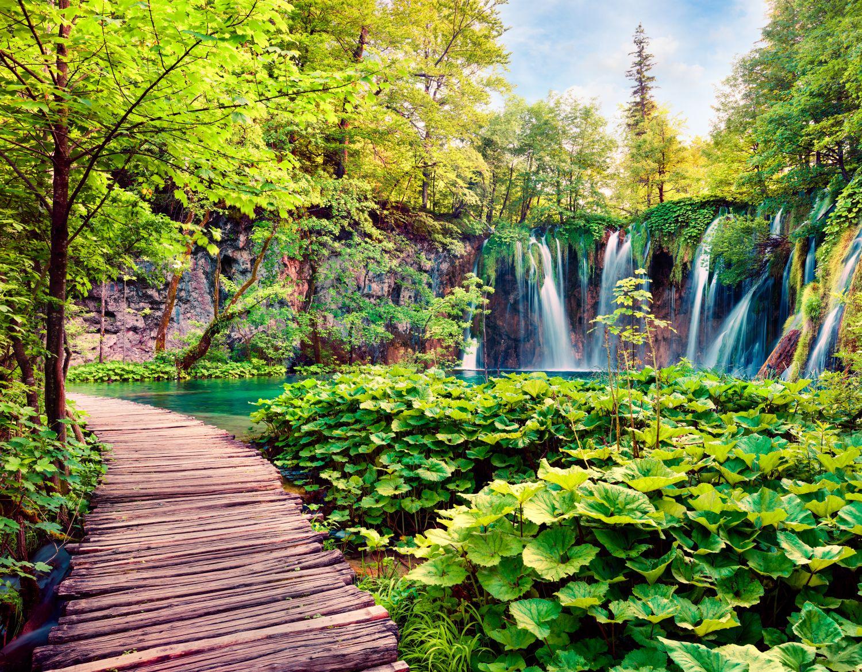 Фотообои «Чарующий водопад»