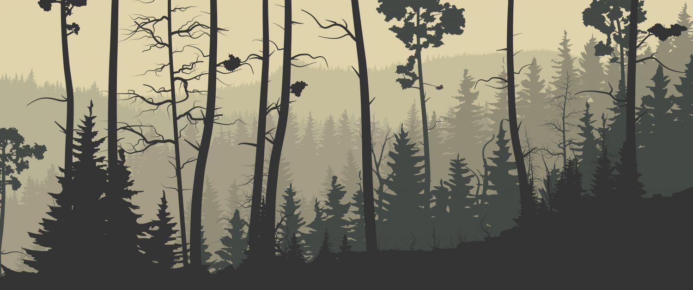 Фотообои «Скандинавский лес»