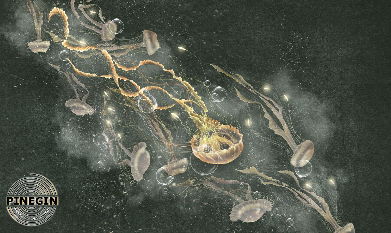 Фотообои «Медузы»