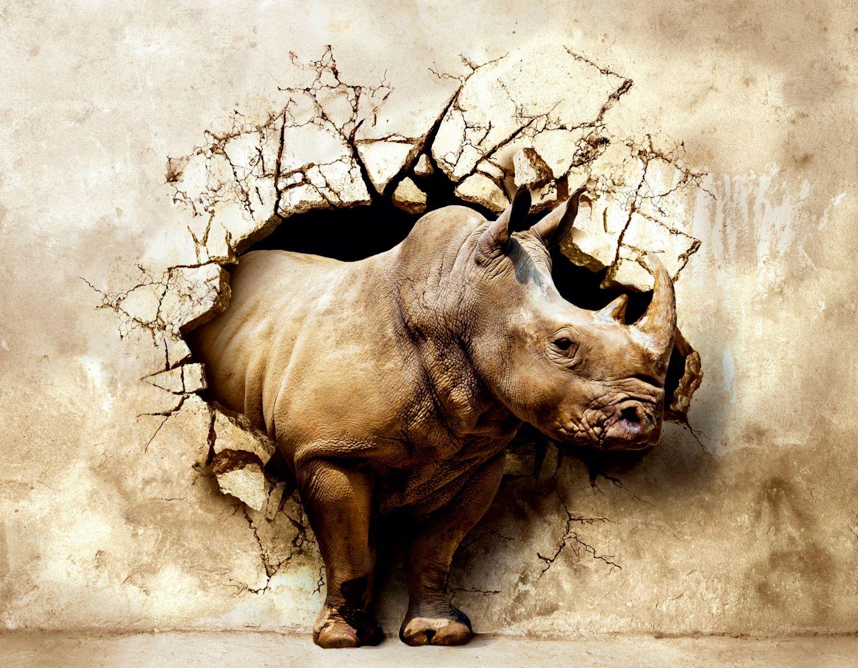 Фотообои «Носорог в стене»