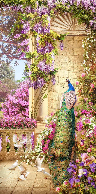 Фотообои «Павлин и голуби»