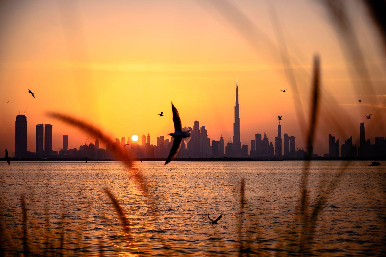 Фрески «Дубай 21»