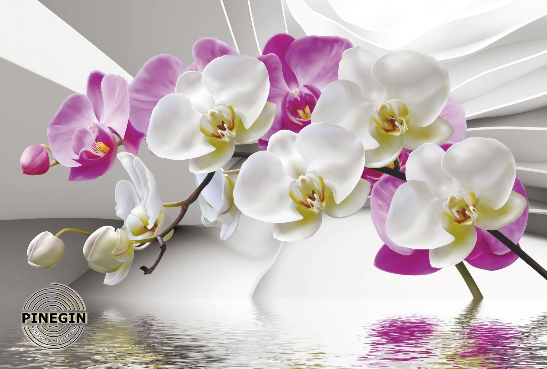 Фотообои «Фрески с большими орхидеями»