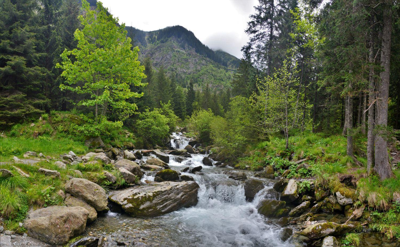 Фотообои «Горная река»