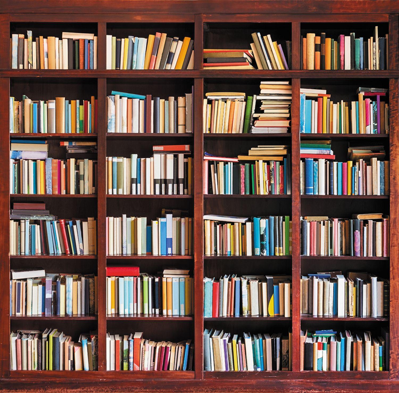 Фотообои «Книжный шкаф»