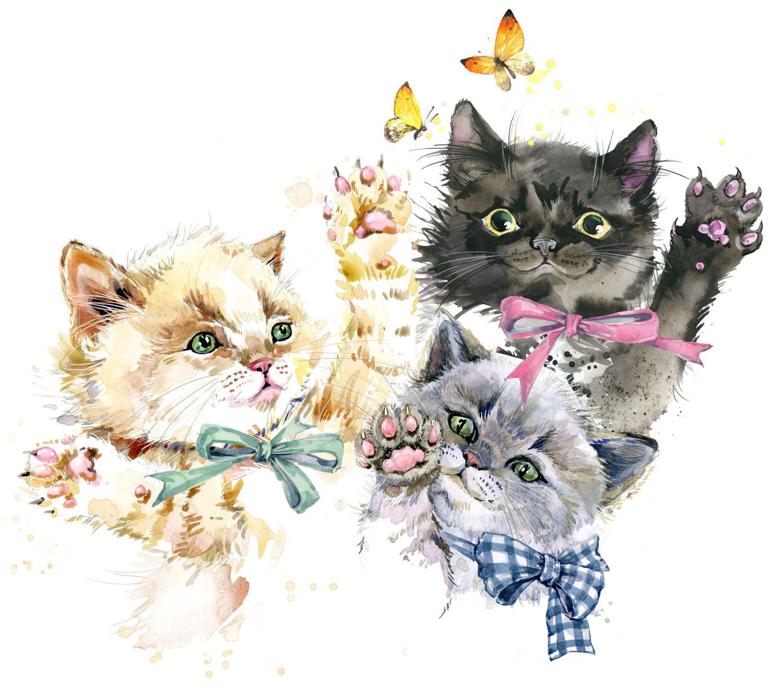 Фрески «Котята 12»