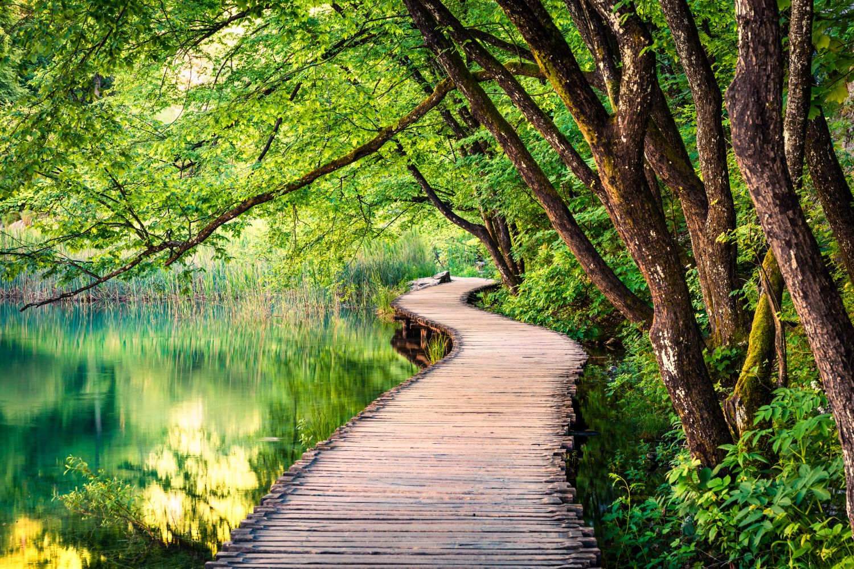 Фотообои «Дорога у озера»