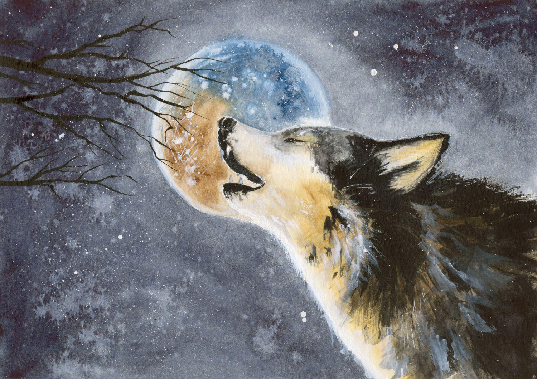 Фотообои «Волки 26»
