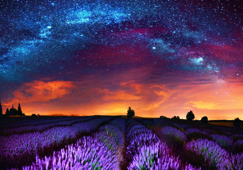 Фотообои «Волшебная ночь»