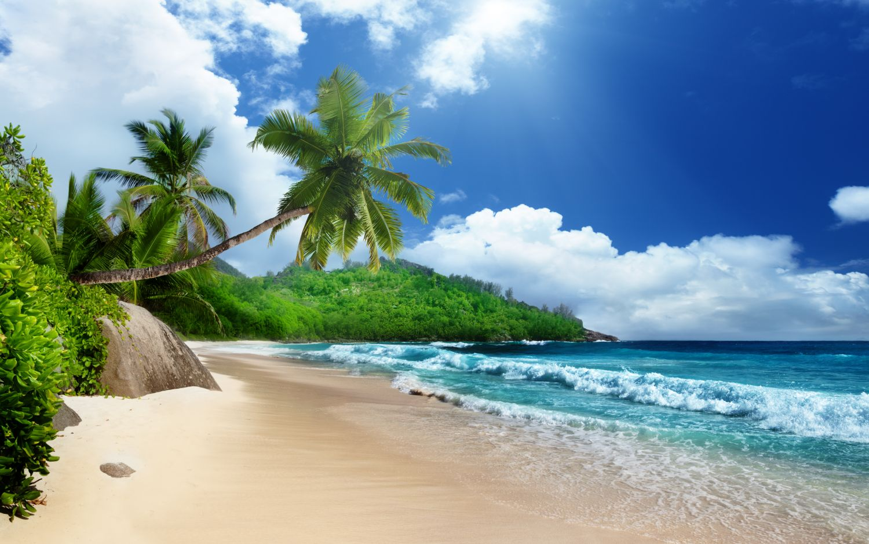Фрески «Песчаный пляж»