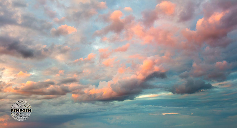 Фотообои «Розовое небо»
