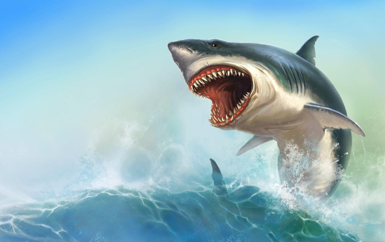 Фрески «Хищная акула»