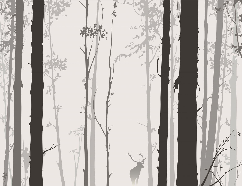 Фотообои «Черно-белый лес»
