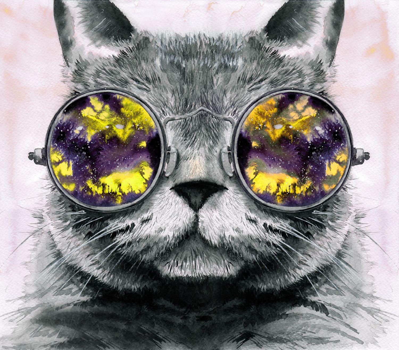Фотообои «Котята 30»