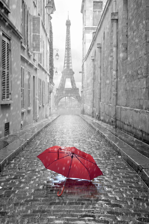 Фотообои «Дождь в Париже»