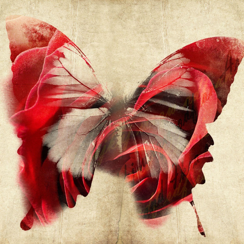 Фотообои «Взмах крыльев бабочки»