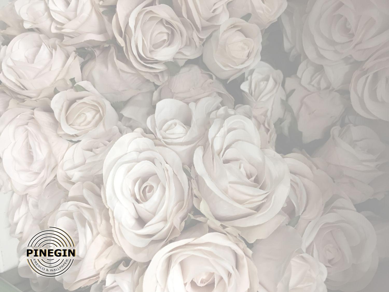 Фотообои «Белые розы»
