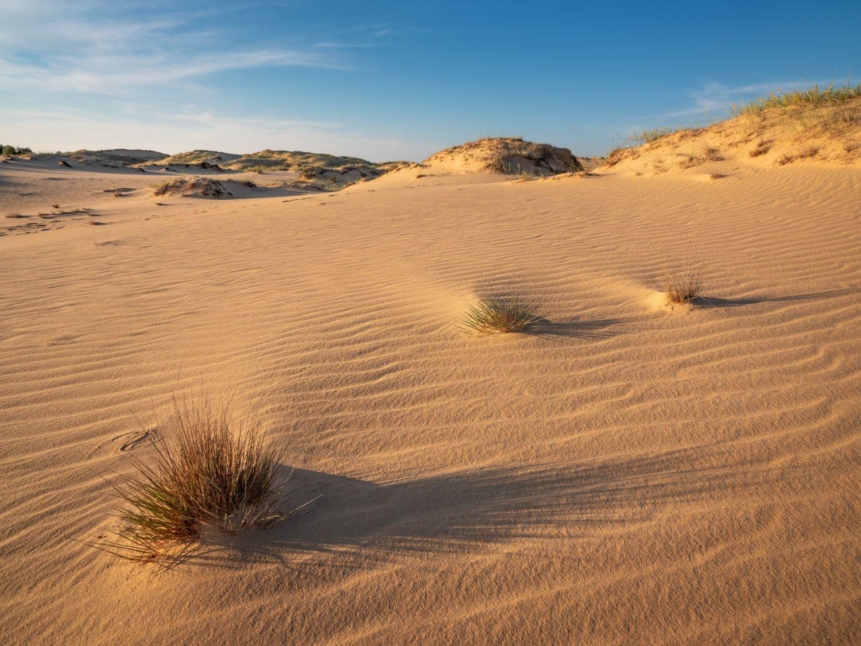 Фрески «Песок 23»