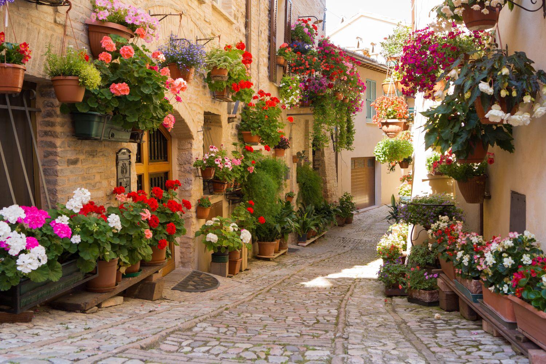 Фотообои «Цветущая Италия»