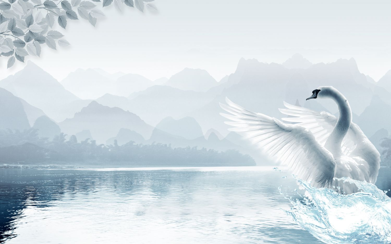 Фотообои «Лебедь белая »