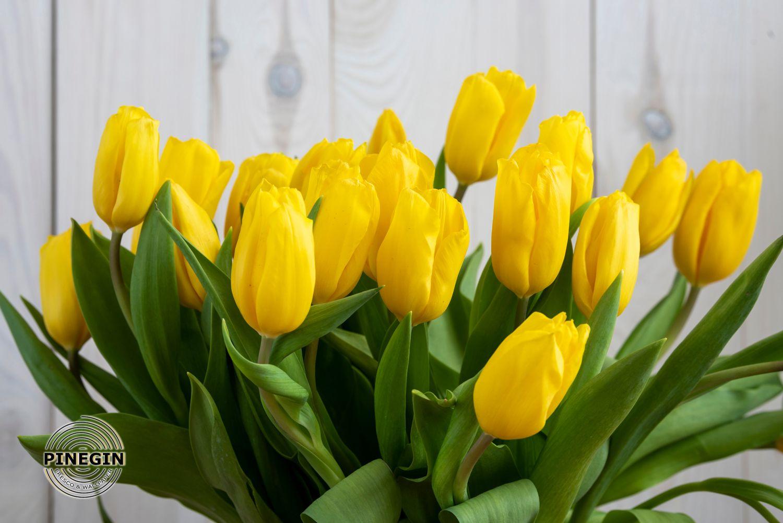 Фотообои «Букет желтых тюльпанов»