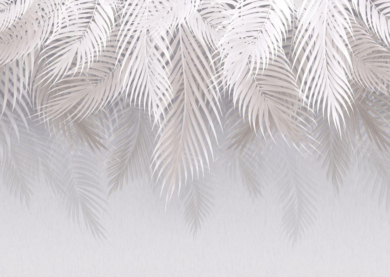 Фотообои «Белые пальмовые листья»