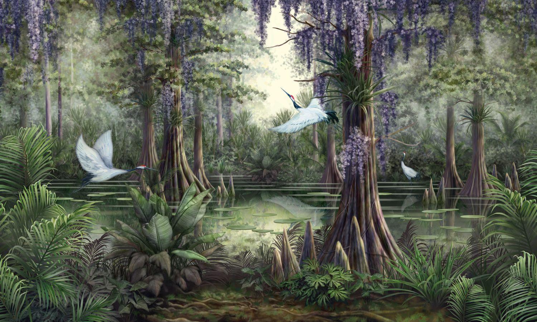 Фотообои «Тропическое болото»