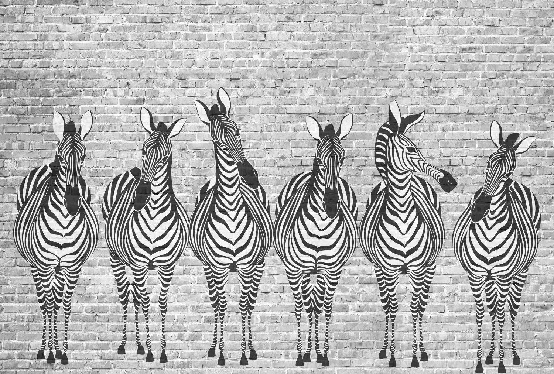 Фотообои «Зебры на кирпичной стене»
