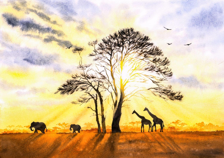 Фотообои «Африка 30»