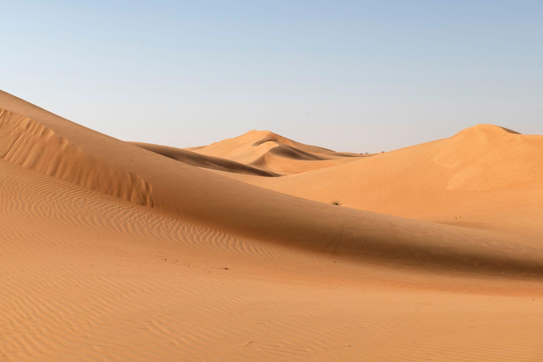 Фрески «Песок 22»