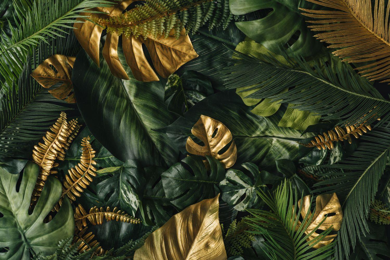 Фрески «Золотисто-зеленые листья»