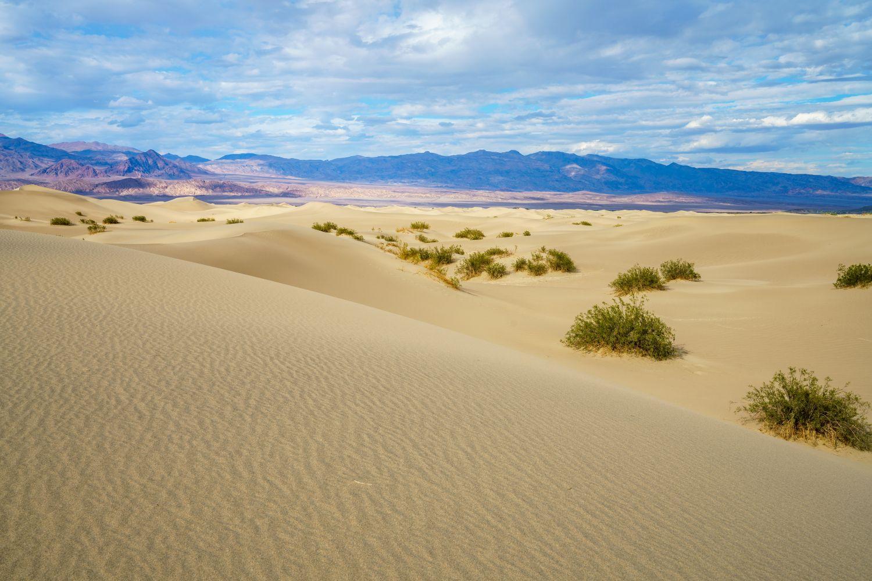 Фотообои «Песок 20»