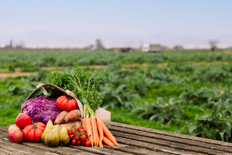 Фрески «Овощи 2»