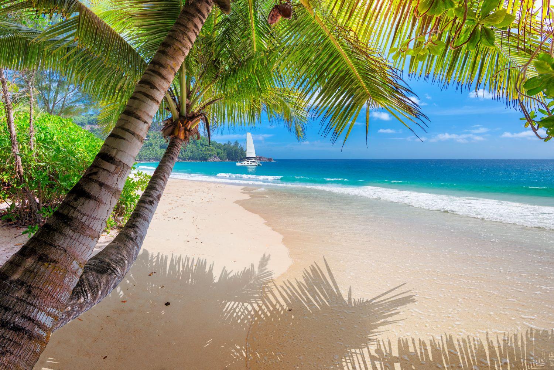 Фрески «Куба - морской вид»