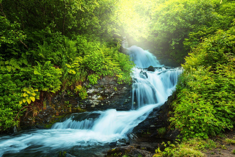 Фотообои «Водопад в лесу»