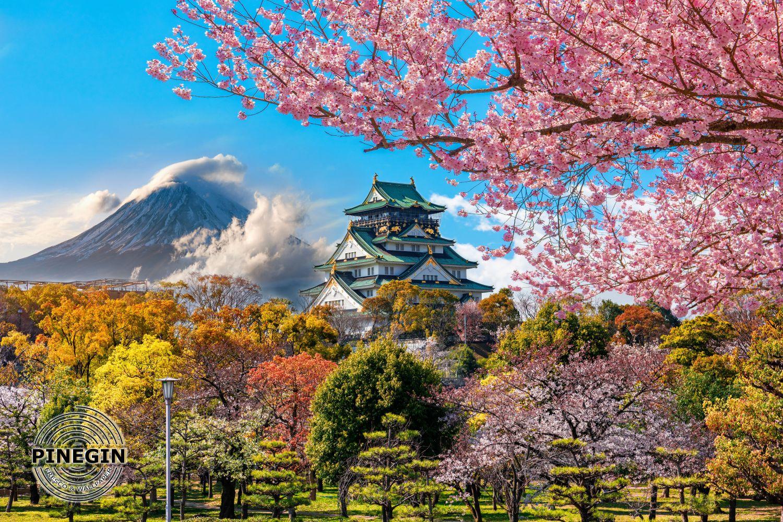 Фотообои «Японская сакура»