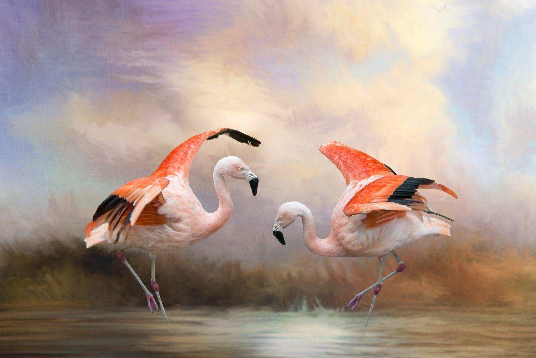 Фотообои «Розовые фламинго»