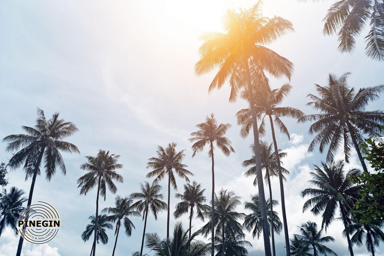 Фрески «Пальма»